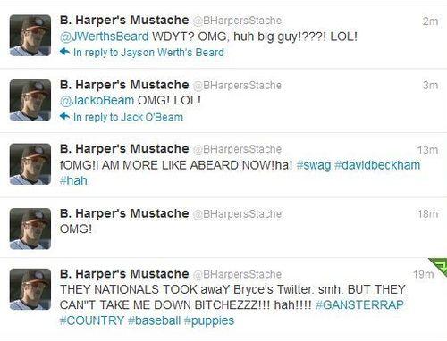 Harper-stache-tweets