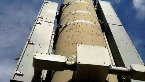 Swarm-of-bees-viera