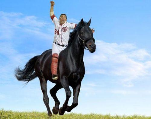 Suzuki-horseback