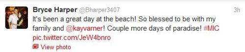 Harper-tweet-paradise