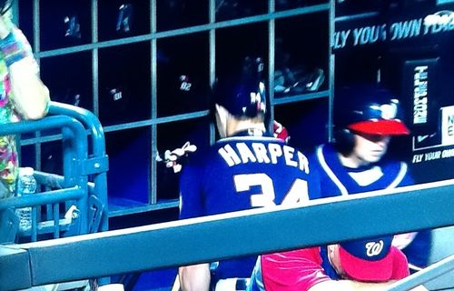 Harper-bat-smash