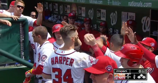 Harper No Hair Flip